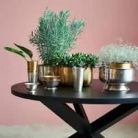 Ciotole e piatti decorativi