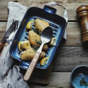 Forno in stile giapponese cambio stoviglie in ceramica da forno piatto occidentale piatto da cucina creativo piatto da pesce piatto orecchie orecchie al forno ciotola