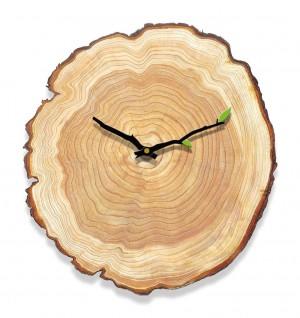 Orologio da parete venatura del legno soggiorno camera da letto orologio muto grafici da parete in legno moderno e minimalista casa annuale anello orologi europei